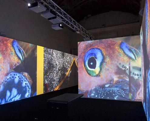 Neo Tech - Esperti in soluzioni audio video per lo spettacolo